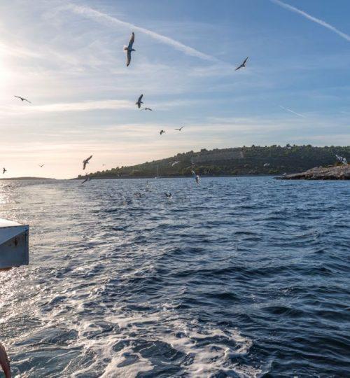 island-tours-korsaro-boat-tour-8